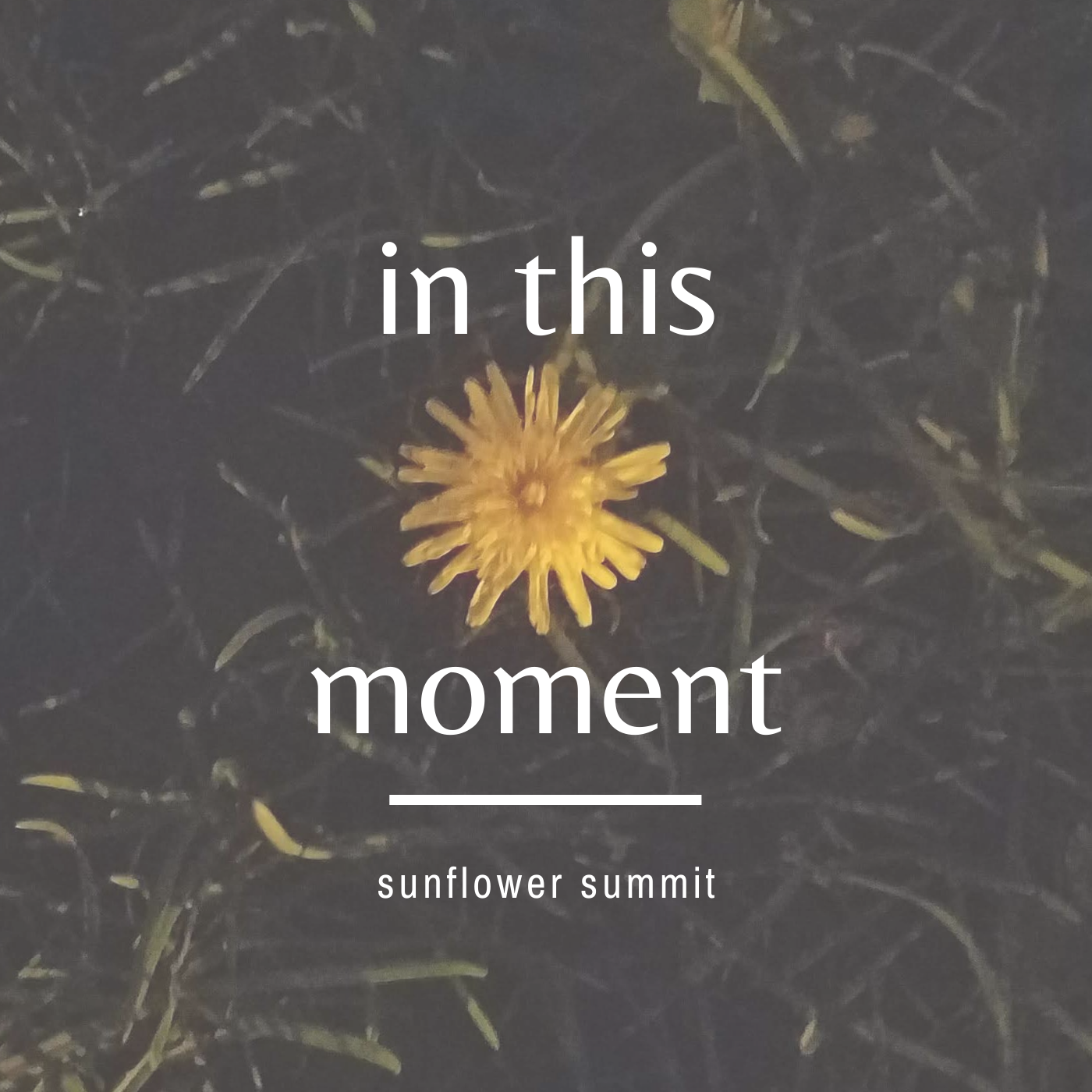 in-this-moment